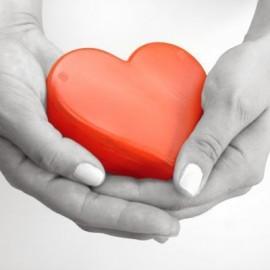 Καρδιά - Κυκλοφορικό